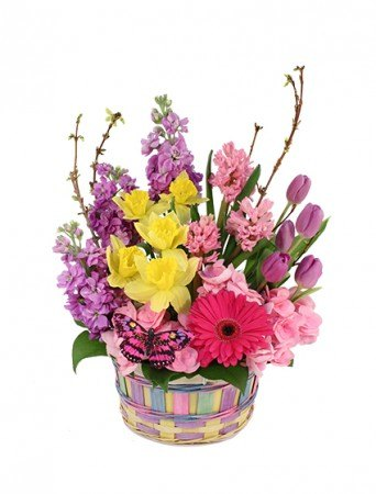 A BREATH OF SPRING BASKET ARRANGEMENT