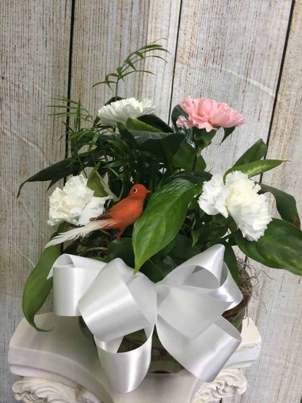 Dear Friend Plant With Fresh Cut Flowers With Birds