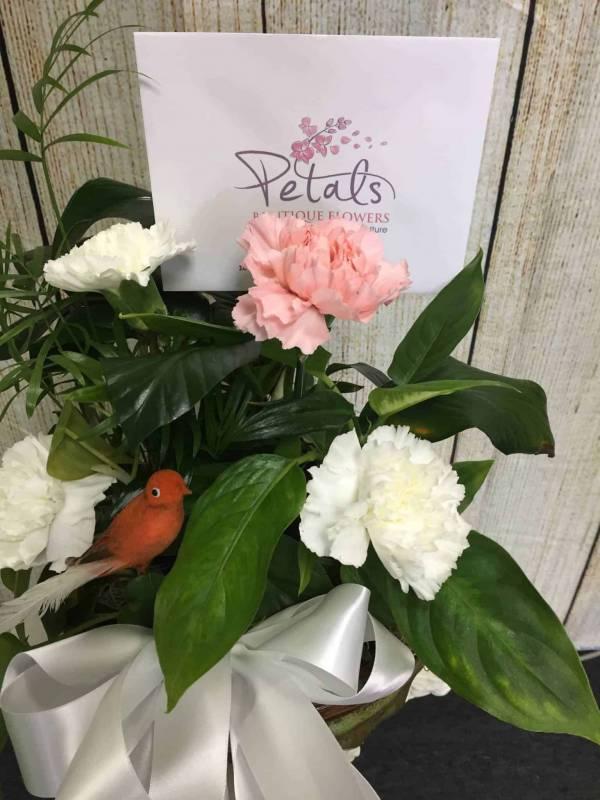 Dear Friend Plant With Fresh Cut Flowers Presentation