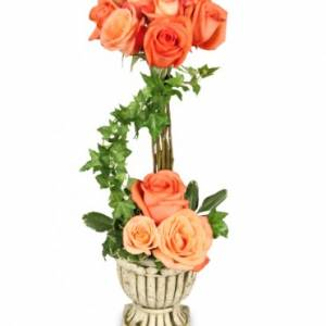 PEACH ROSE TOPIARY