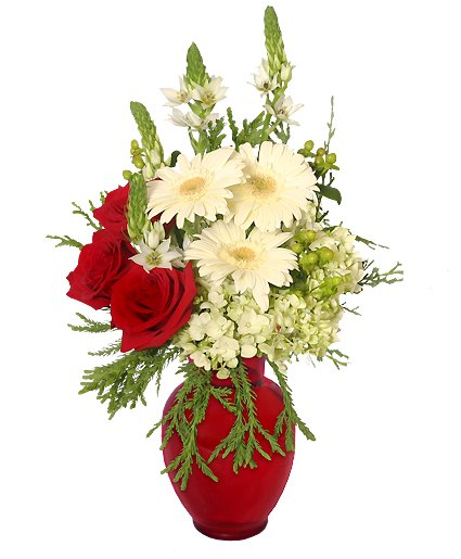 Crimson & Cream Christmas Flower Arrangement From Petals Florist & Flower Shop