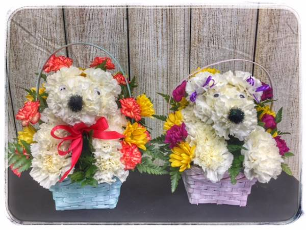 Puppy Flower Basket from Petals Boutique Flowers