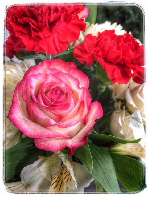 Jingle-Ling Christmas Flowers from Petals Florist & Flower Shop
