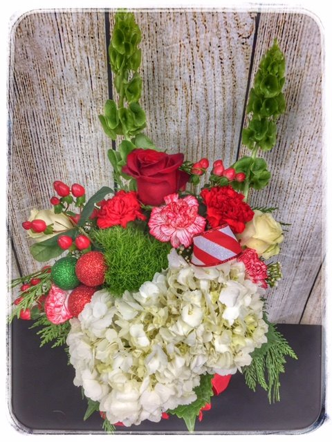 Holiday Blooms Christmas Flowers from Petals Florist & Flower Shop